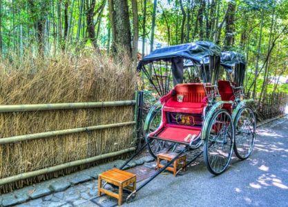 Знаменитая Бамбуковая роща в Киото, р-н Аращияма