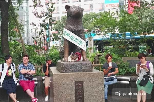 Акита, Токио, Хатико