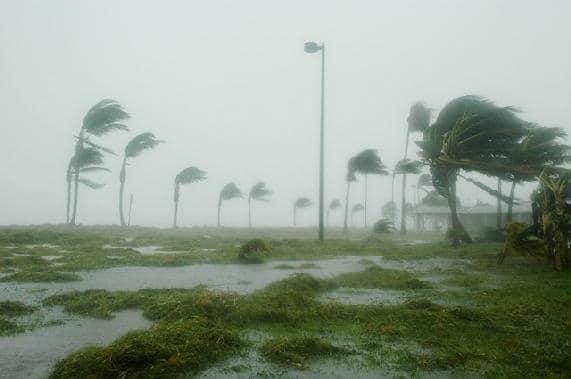 tayfun-v-yaponii