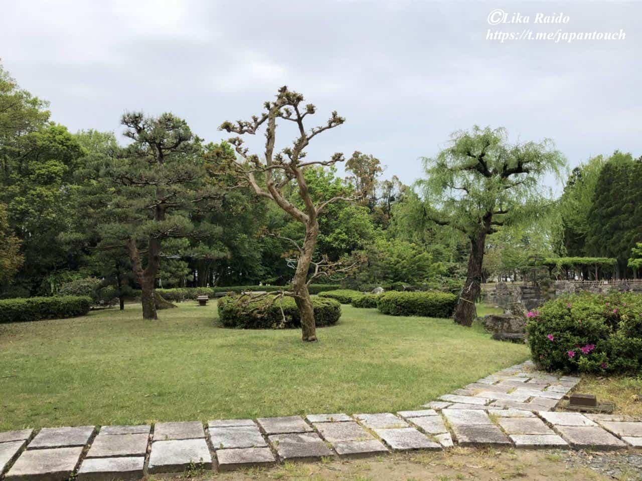 Прогулки по японскому саду