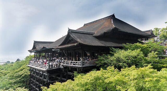 Медицинская страховка в Японии: нужна ли она туристу?